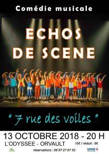 COMEDIE MUSICALE diffusée par ECHOS DE SCENE